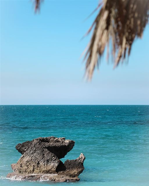 I can see clearly now the rain is gone  DOF  Sea  Beach  Spring  Summer ... (KAPTN Batroun)