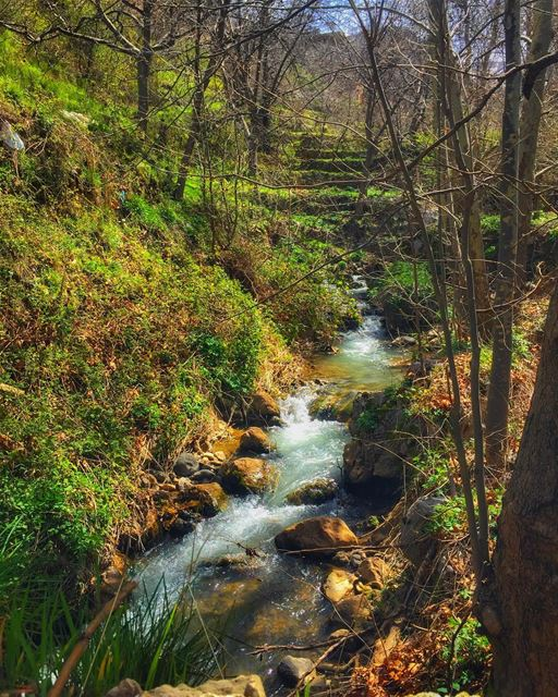 """In every walk with nature one receives far more than he seeks.""... (Tannurin At Tahta, Liban-Nord, Lebanon)"