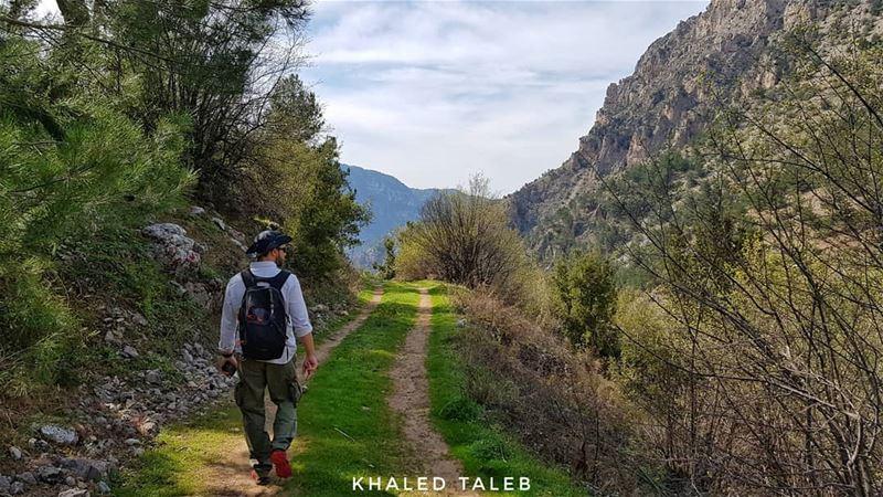 هيك منمشي ب عكار ❤مشمش -عكار درب الجبل اللبناني - القسم ٢ ⭐⭐⭐⭐⭐⭐⭐⭐⭐⭐⭐⭐⭐