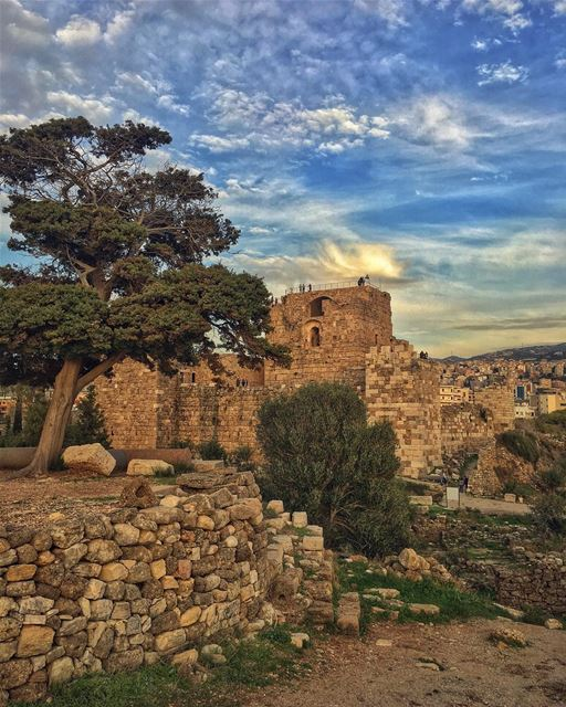 Strained by overgrown dreamsRooted in disillusionmentBut in the hour... (Byblos, Lebanon)