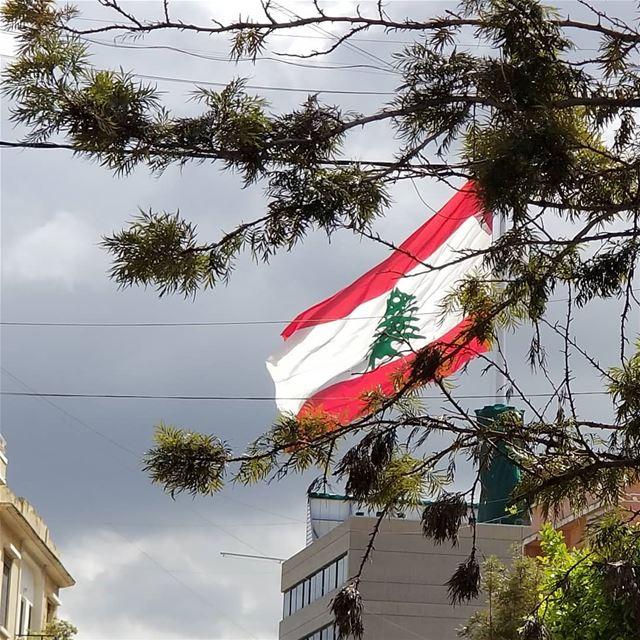 Koulouna libaladi! voteright votelibaladi electionsseason country ... (Achrafieh, Lebanon)