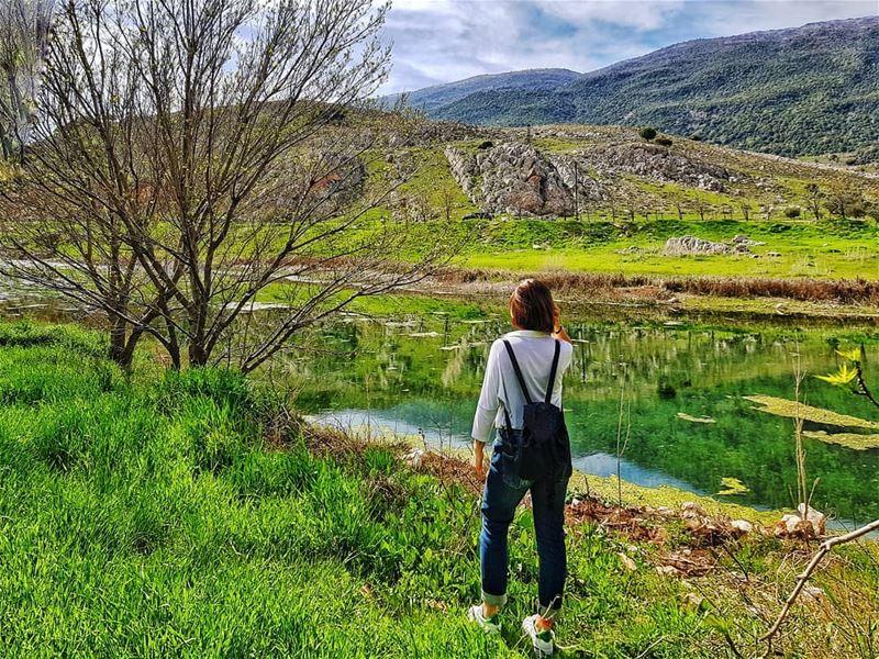 Go green ☘ ammiq livelovebekaa........ naturepainting lake ... (`Ammiq, Béqaa, Lebanon)