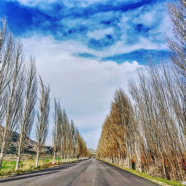 I always feel like  capturing this beautiful  bekaa road again and again 🛣 (West Bekaa)