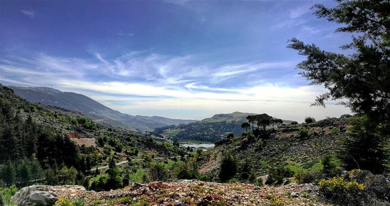 Drive & get lost in nature's beauty livelovebeirut livelovelebanon ... (Arz el Bâroûk)