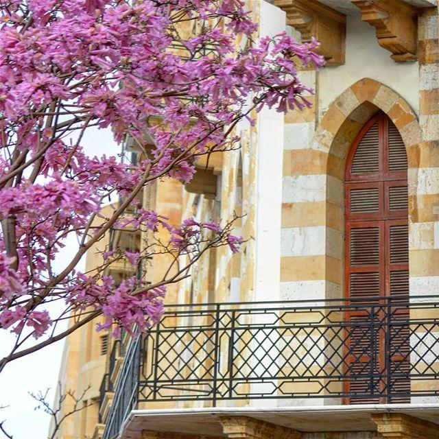 My Beirut 💗 lebanonbyalocal lebanonisbeautiful wearelebanon ... (Downtown Beirut)