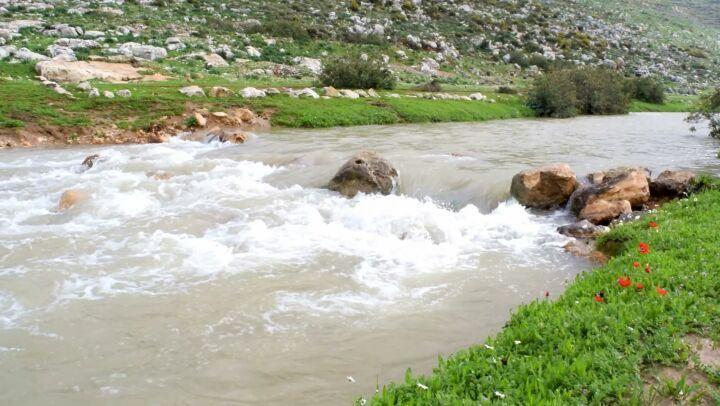 صباح الخير يا وطني 🇱🇧 nature river lebanon southlebanon ...