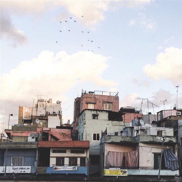 - B Beirut -... ihaveathingwithfacades architecturephotography ... (Beirut, Lebanon)