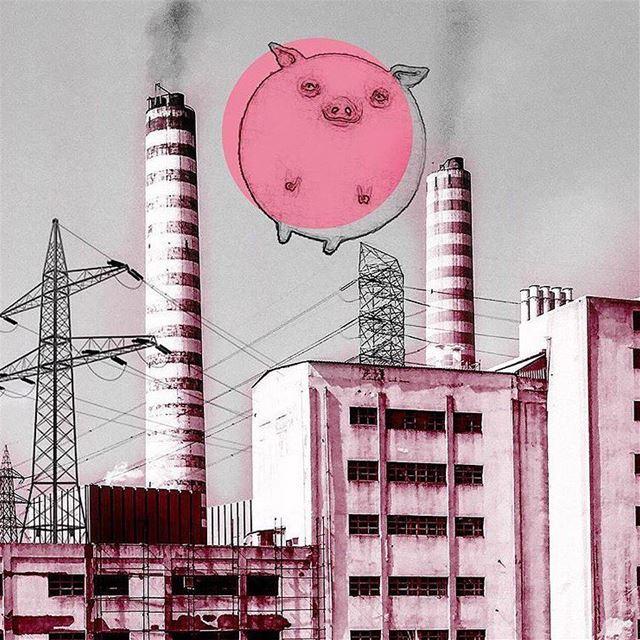 -P i g s M i g h t F l y -(Repost: @elmaalouf )... pinkfloyd art ...