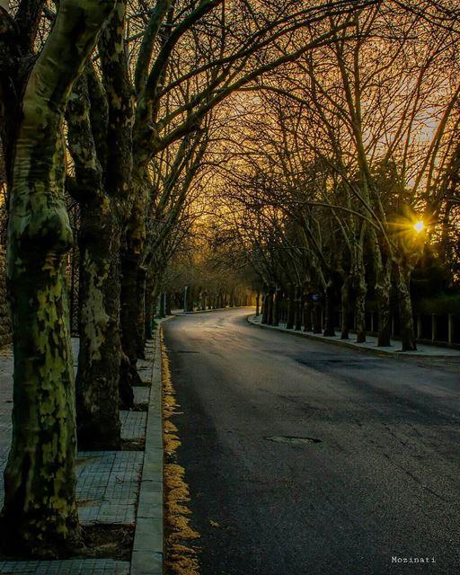 Even an empty Road leads somewhere..Right? 😃👌 =========================== (Sawfar, Mont-Liban, Lebanon)