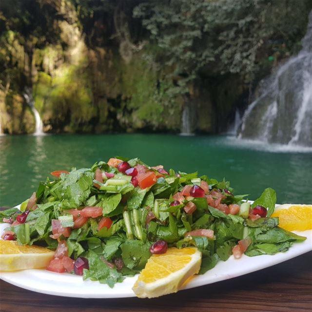 Salad anyone ??📞📞Reserve now on 03560301.. lebanon freshview ... (Shallalat Al Zarka شلالات الزرقا)