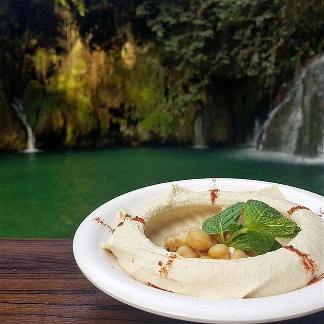 Hummus love❤️😍.. lebanon lebanesefood livelovelebanon hummous ... (Shallalat Al Zarka شلالات الزرقا)
