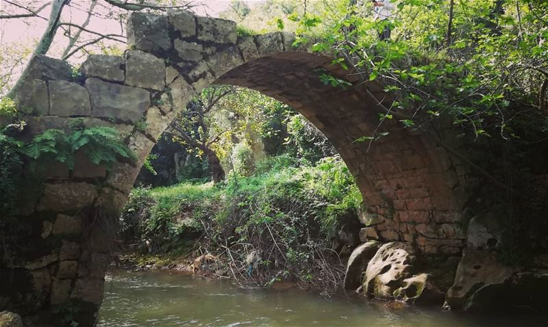 livelovenature livelovetannourine river bridge livelovelebanon ... (Nahr el Jaouz)