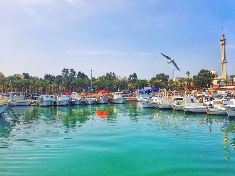 🏄 ⚓ Tripoli   Al-Mina 🚤 🏖📷 Lebanon   tripoli in 19/3/2018 😎🌊 🚣 � (Tripoli, Lebanon)