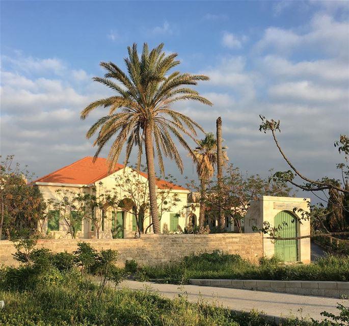 Centre d'Archeologie Sous-Marine heritage lebanesehouse lebanonhouses ... (Tyre, Lebanon)