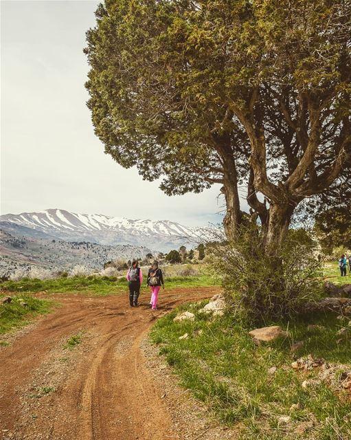 Guess Where?Edit - Answer : Jurd El Hermel, Lebanon travelbloggers ... (Lebanon)