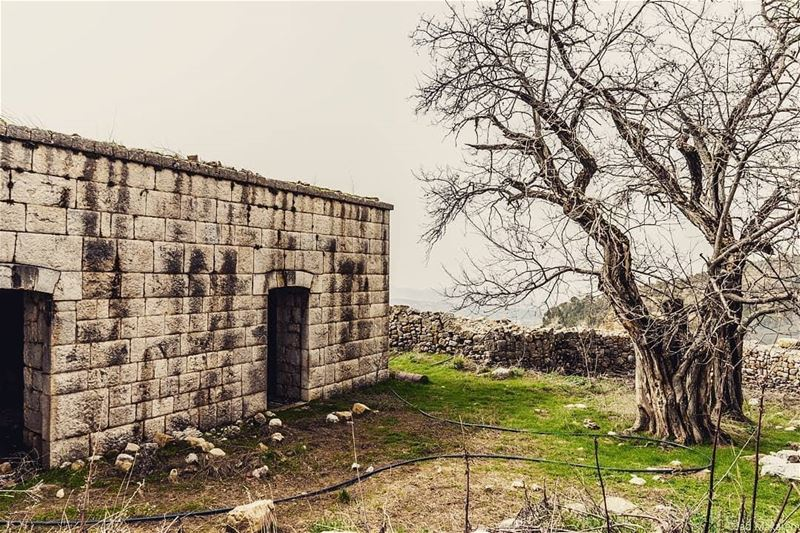 If only old buildings can talk travelbloggers discoverearth ... (Ehmej, Mont-Liban, Lebanon)