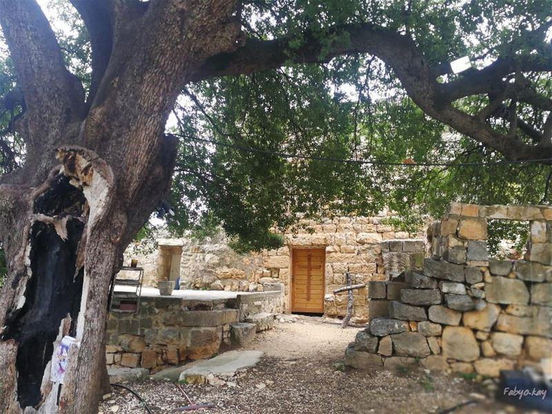 المسيح قام حقاً قام...ونحن شهود..... _____________________________________... (Hardîne, Liban-Nord, Lebanon)