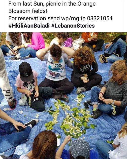 maghdoucheh spring blossom HkiliAanBaladi LebanonStories tourism ...