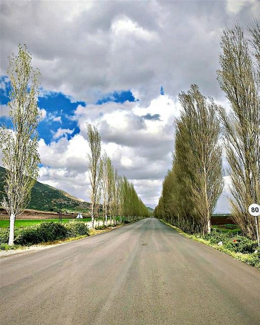 Map out your future - but do it in pencil. The road ahead is as long as... (`Ammiq, Béqaa, Lebanon)