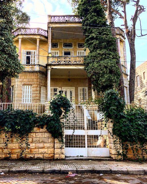 montlebanon boisdeboulogne lebanon lebanoninapicture ig_lebanon ... (Bois De-Boulogne, Mont-Liban, Lebanon)