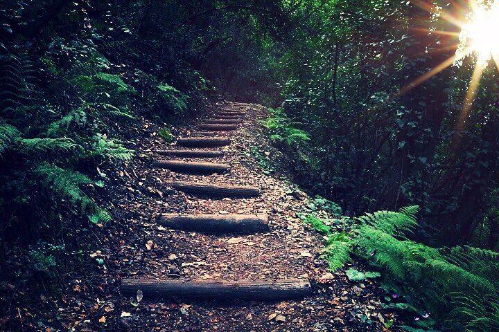 لِأنّ بعرف أنّو كلّ طريق بمشيا بعيد عنِّك بكون عم بمشيا بنفس الوقت بقلبِك. (Chouène, Mont-Liban, Lebanon)