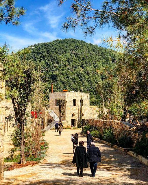 Healthy change of scenery bkerzay lebanon liban libano lebanese ... (Bkerzay)