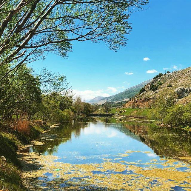 nature_prefection natutelovers ammiq bekaa lebanon🇱🇧 ... (`Ammiq, Béqaa, Lebanon)