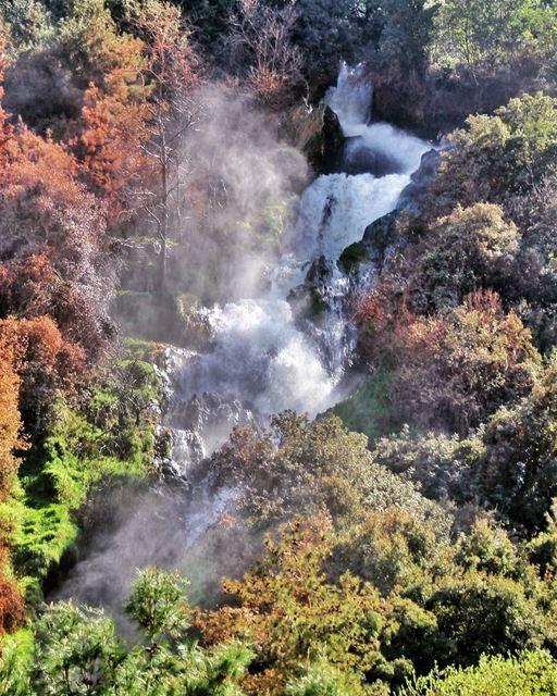 Waterfall & trees! . . . . . lebanon livelovebeirut proudlylebanese ... (Ouyoun El Samak Waterfalls)