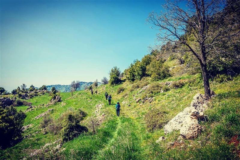 I would rather be walking this path than posting this travelbloggers ... (`Akkar, Liban-Nord, Lebanon)
