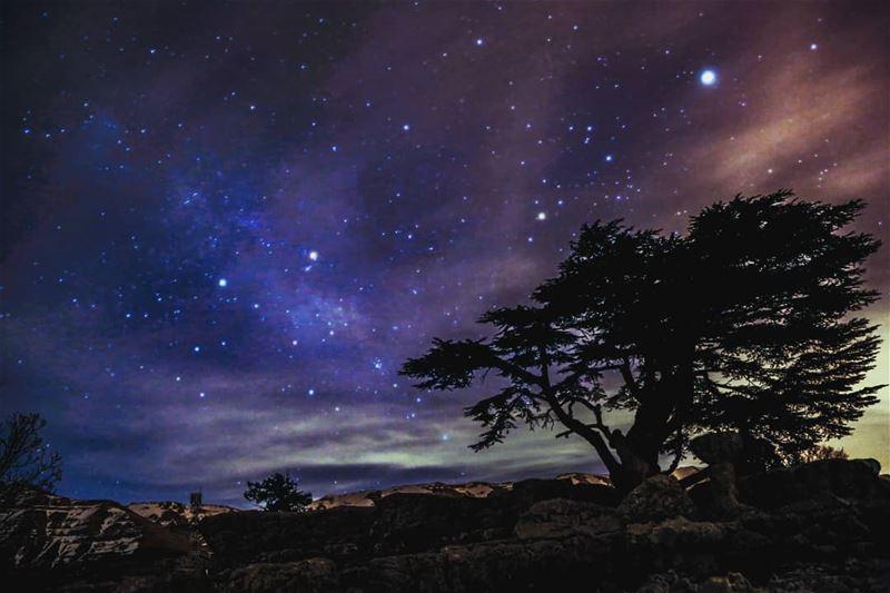 Starry nights quiet the soul camper stargazing stars stargazer ...