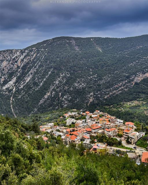 Tourza. A traditional Lebanese village located beneath the green mountains... (Tourza, Liban-Nord, Lebanon)
