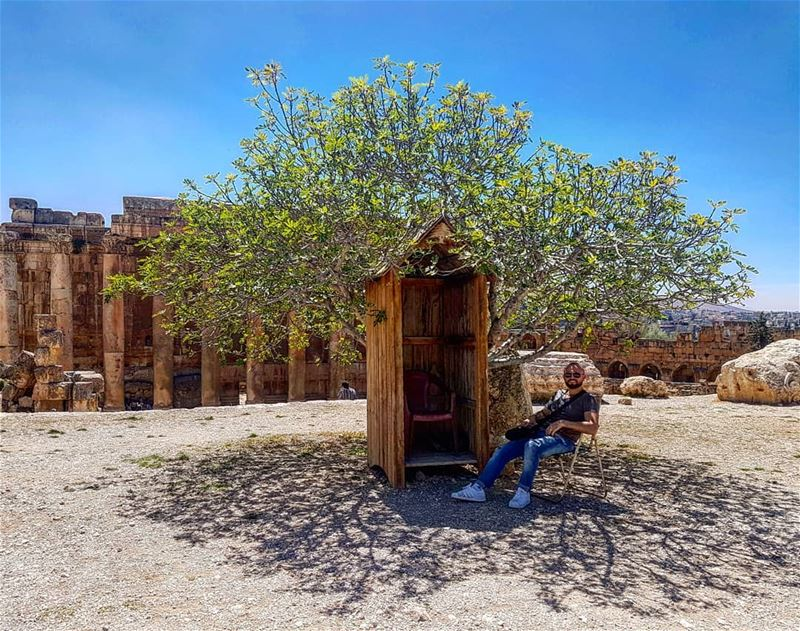Tree of the dayPhoto credit: The guard who were sitting on that chair... (Baalbek, Lebanon)
