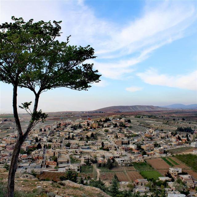 nature_photography lebanon live_love_lebanon springseason trees... (Brîtel, Béqaa, Lebanon)