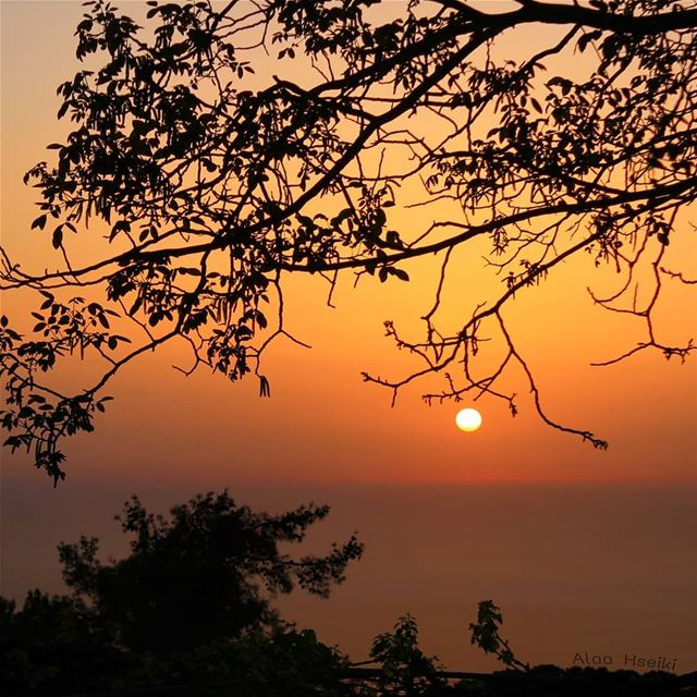 ~A Magical Moment.. 🌇... Hseiki Lebanon beirut nature photography... (Aïnâb, Mont-Liban, Lebanon)