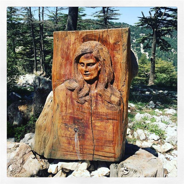 Le mémorial de Dalida à la réserve naturelle des Cèdres de Tannourine... (Arz Tannoûrîne)