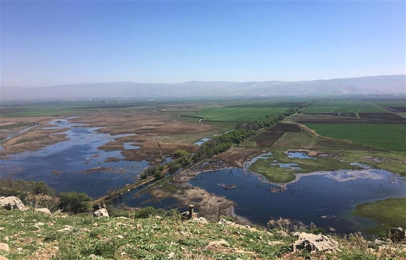 The Globe 🌎?! ammiq ammiqwetlands ammiq_bekaavalley wetlands bekaa ... (`Ammiq, Béqaa, Lebanon)