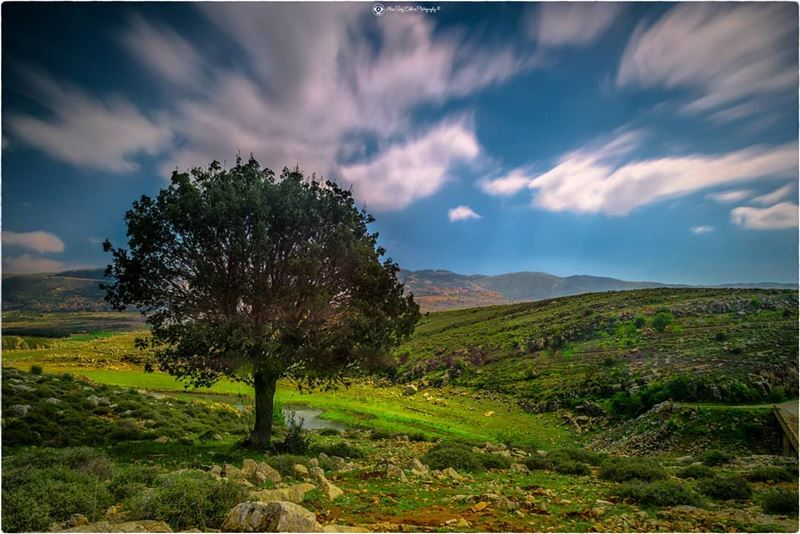 At this spot, life turns only beautiful,  inspiring,  relaxing and joyful.... (Saghbîne, Béqaa, Lebanon)