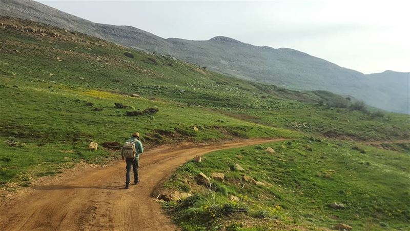 The road less traveled 🍃...... roamtheplanet adventurethatislife ... (Falougha, Mont-Liban, Lebanon)