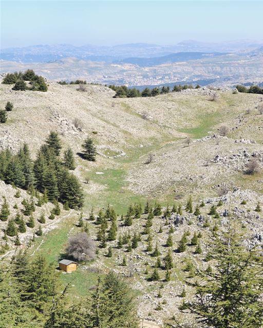 No neighbors, no problem!..... beautifuldestinations places_wow ... (Bâroûk, Mont-Liban, Lebanon)