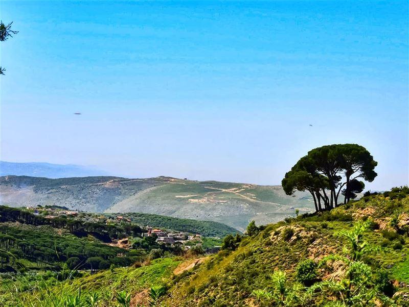 lebanoninapicture ptk_lebanon livelovebeirut insta_lebanon ... (Aïchiye, Al Janub, Lebanon)