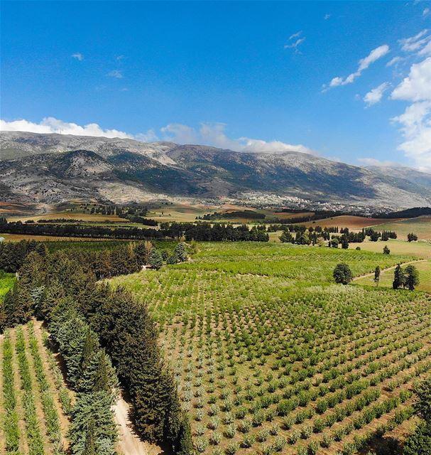 • g r e e n • luna_drone mavicair mavic drone dji aerialphotography... (Khirbet Qanafâr, Béqaa, Lebanon)