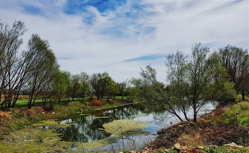 How  peaceful is it? 🏞 ammiq  livelovebekaa........... (Aammiq Wetland)