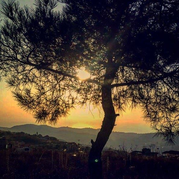 Take a moment to enjoy God's creation 💛 sunset beautiful view god ... (Bhamdoûn, Mont-Liban, Lebanon)