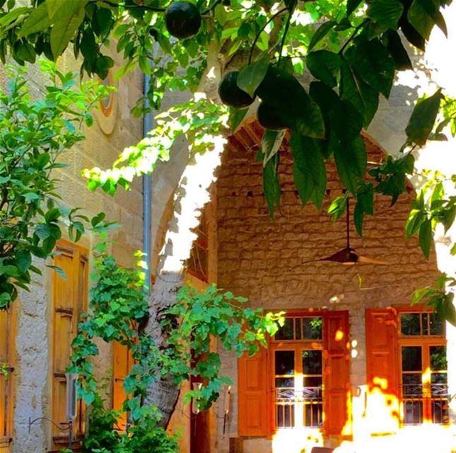 tyre @saoussan.kaissi oldhouses heritagelibanais oldheritage nature... (Tyre, Lebanon)