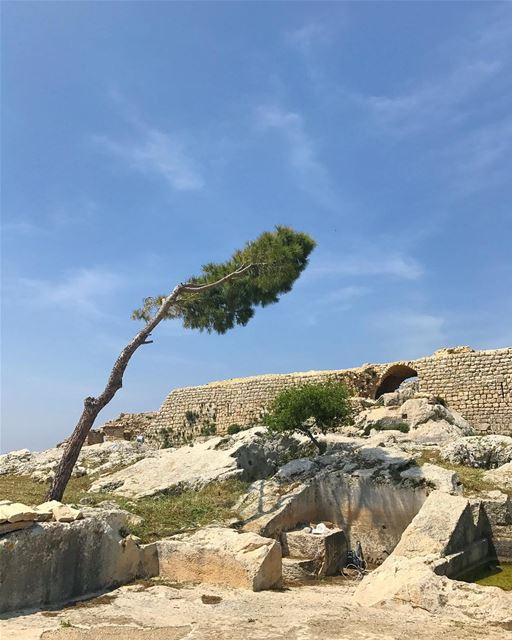 whatsuplebanon livelovelebanon ... (Smar Jubayl, Liban-Nord, Lebanon)
