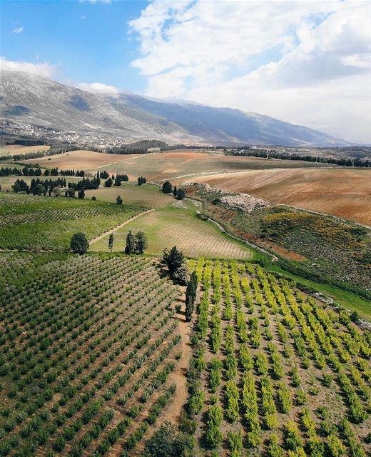 • b e a u t y • luna_drone mavicair mavic drone aerialphotography ... (Khirbet Qanafâr, Béqaa, Lebanon)