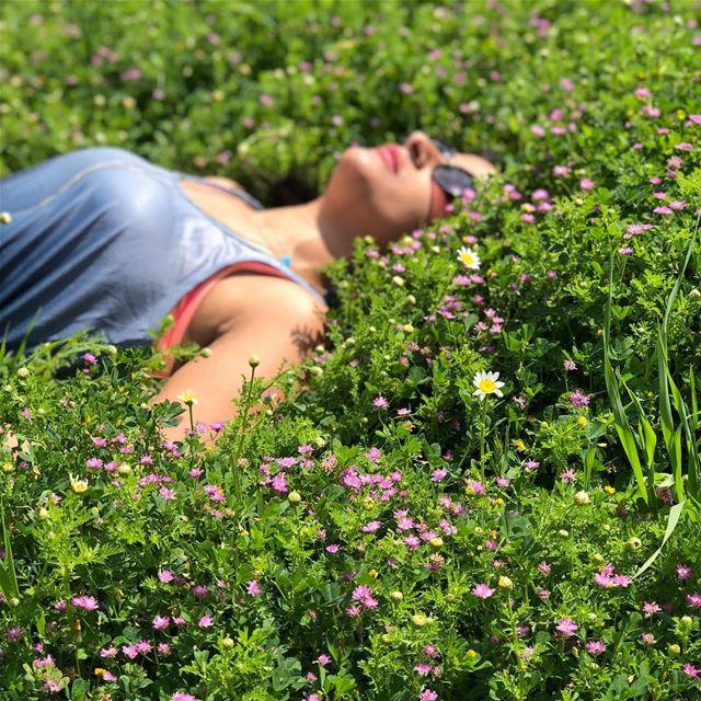 springfield springtime enjoylife enjoythelittlethings purple flowers... (Jezzîne, Al Janub, Lebanon)