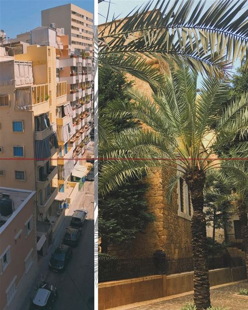 🌴 x 🚗 x 🇱🇧 = ❤️ (Beirut, Lebanon)