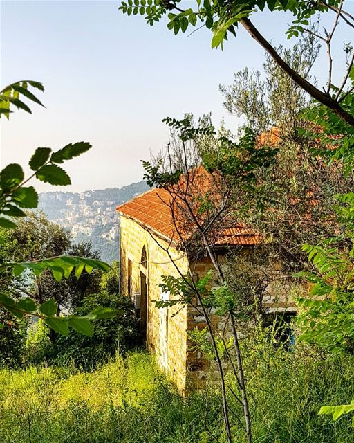 More than a season, Spring is a state of mind instagood insta_lebanon ... (Araya, Mont-Liban, Lebanon)