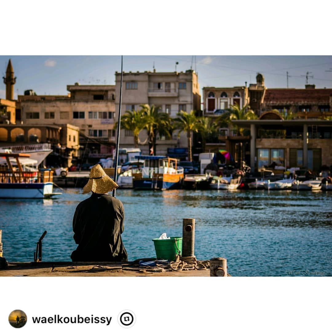 """ tyre lebanon boats fishing fishinglife buildings city sea ... (Tyre Fishermen Port.)"